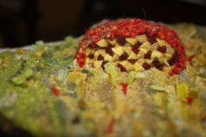 detail plaiting, weaving by Susan L. Feller