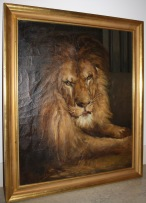 majestic lion oil painting